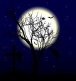 księżyc drzewo Zdjęcia Stock
