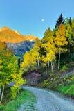 Księżyc, śnieg zakrywał góry i żółtą osiki przy zmierzchem Fotografia Stock