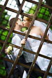 Küssen Sie die Braut und den Bräutigam am Hochzeitsweg Stockfotos