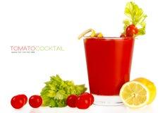 Köstliches frisches Tomaten-Cocktail Schablonendesign Lizenzfreie Stockfotografie