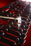 Ksylofon Zdjęcie Stock
