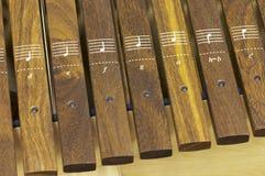 ksylofon zdjęcie royalty free