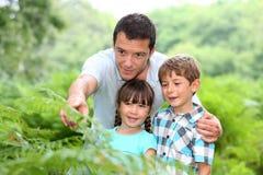 Kształcić dzieci z naturą fotografia stock