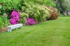 Kształtująca teren ogrodowa scena z białą ławką obraz stock