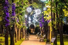 Kształtujący noc lampiony wiesza w miasto parku przy Kryvyi Rih Obraz Stock