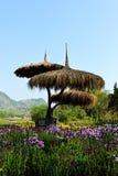 kształtujący teren kwiatu ogród Zdjęcia Stock