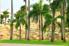 Kształtujący teren parka w Tajlandia, Zdjęcia Stock