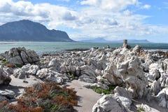 Kształtuje teren i wyrzucać na brzeg w bettyzatoce z ślicznymi Jackass pingwinami blisko Kapsztad, Południowa Afryka Obraz Royalty Free