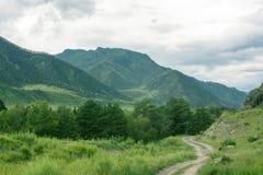 Kształtuje teren z gór drzewami Fotografia Royalty Free