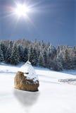 kształtuje teren zima zdjęcie royalty free
