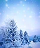 kształtuje teren zima Obrazy Royalty Free