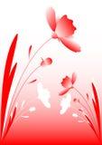Rewolucjonistka kwiaty Obrazy Stock