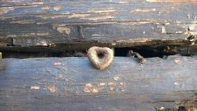 Kształt serce Zdjęcie Stock