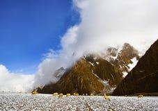 kształtuje teren Tibet Obraz Royalty Free