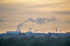 Kształtuje teren w Zeeland holandie Zdjęcie Stock