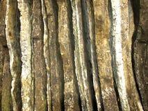kształty Fotografia Stock
