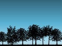 kształtuje teren drzewa Fotografia Stock