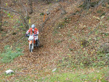 KTM Enduro motorcycles and riders Stock Photography