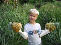 ktoś ananasy Obrazy Stock