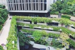 KTPH Hospital, Singapore Stock Photography