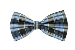 Łęku krawat Zdjęcia Stock