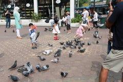 Kuala Lumpur, Malásia - 11 de agosto de 2013: Crianças que jogam com porco imagens de stock royalty free