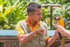 Kuala Lumpur, Malasia - 2 de março de 2015: O instrutor e treinado Fotos de Stock Royalty Free