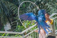 Kuala Lumpur Malasia - mars 02, 2015: Instruktören, besökare och Fotografering för Bildbyråer