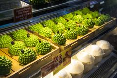 KUALA LUMPUR MALAYSIA - DECEMBER 19, 2016: Mini Durian Imperial C royaltyfria foton