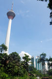 Kuala Lumpur, Malaysia - January 16, 2016: view of the KL commucation Tower between palms and plant Royalty Free Stock Photos