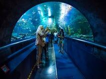 Kuala Lumpur Malaysia - mars 13, 2018: Turister gör foto av fisk i Aqua Park i Kuala Lumpur arkivbilder