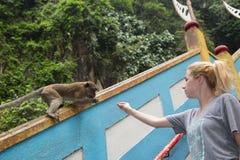 Kuala Lumpur Malezja, WRZESIEŃ, - 27: Turystyczna karma Cynomolgus M Fotografia Royalty Free