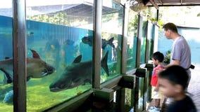 Kuala Lumpur Zoo, Malaysia Royalty Free Stock Photo