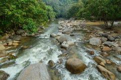 Kuala Woh photos stock