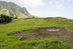 Kualoa-Ranch lizenzfreie stockfotografie