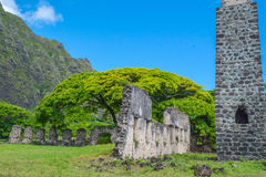 Kualoa-Ranch Sugar Mill Ruins stockbild