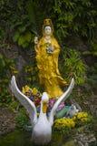 Kuan尹-慈悲的佛教女神 免版税库存照片