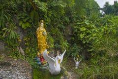Kuan尹-慈悲的佛教女神 库存图片