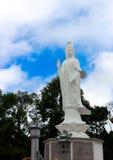 kuan yin Royaltyfri Fotografi