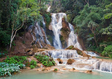 Kuang Si Waterfall. Luang Prabang. Laos. Stock Photo