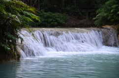 Kuang Si Kouangxi vattenfall, Luangprabang, Loas Royaltyfria Bilder