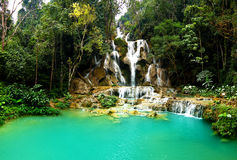 Kuang Si Wasserfall, Luang prabang, Laos Stockbilder