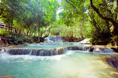Kuangsi  waterfall in deep forest in Laos Stock Images