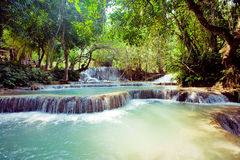 Kuangsi  waterfall in deep forest in Laos Royalty Free Stock Photos