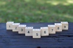 Kub för matematisk formel 1x1 i träbakgrund Royaltyfria Foton