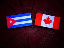 Kubańczyk flaga z kanadyjczyk flaga na drzewnym fiszorku odizolowywającym zdjęcia royalty free