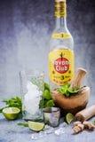 Kubańczyk Mojito z Hawańskim Świetlicowym rumem Zdjęcia Stock
