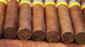 Kubańscy cygara, ręcznie robiony zdjęcie wideo