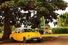 Kuba, Havana - 16. Januar 2019: Altes gelbes Taxiauto in der alten Stadt von Havana gegen den tropischen Baum lizenzfreie stockfotos