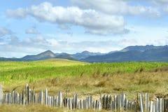 kubańska krajobrazu Fotografia Royalty Free